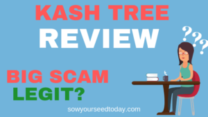 Is Kash Tree a scam? – Kash Tree review