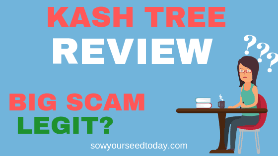 Is Kash Tree a scam, Kash tree review