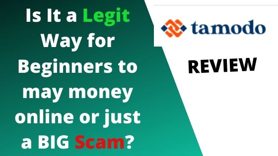 Tamodo review: Is it a scam or a legit affiliate network to make $700 a week?
