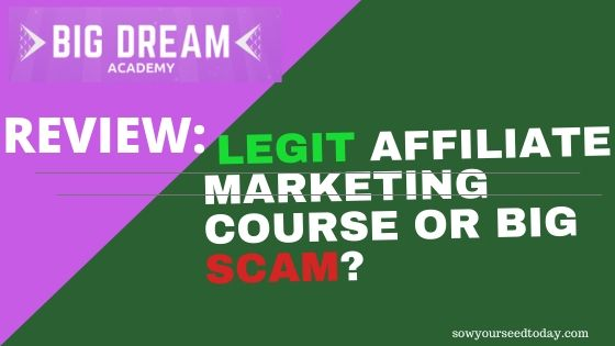 Big Dream Academy review: scam or legit [Pros & Cons and price]