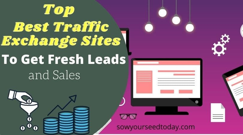 Top 8 best free traffic exchange sites for 2020 to get fresh leads and sales (Tested)
