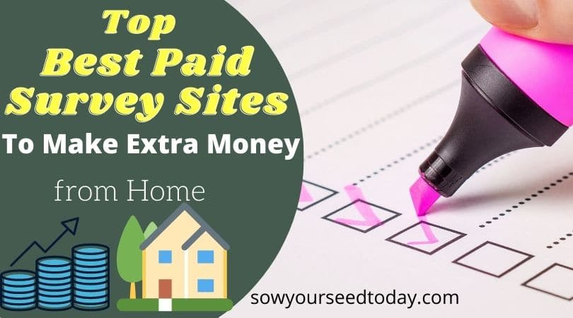 Top Best Paid Online Survey Sites to make extra money from home [2020]