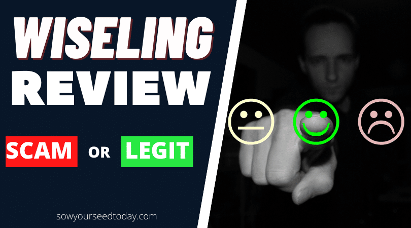 Wiseling Review