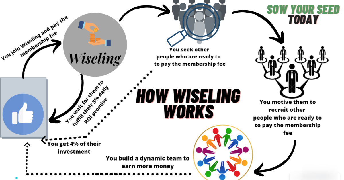 Wiseling review - the way it works