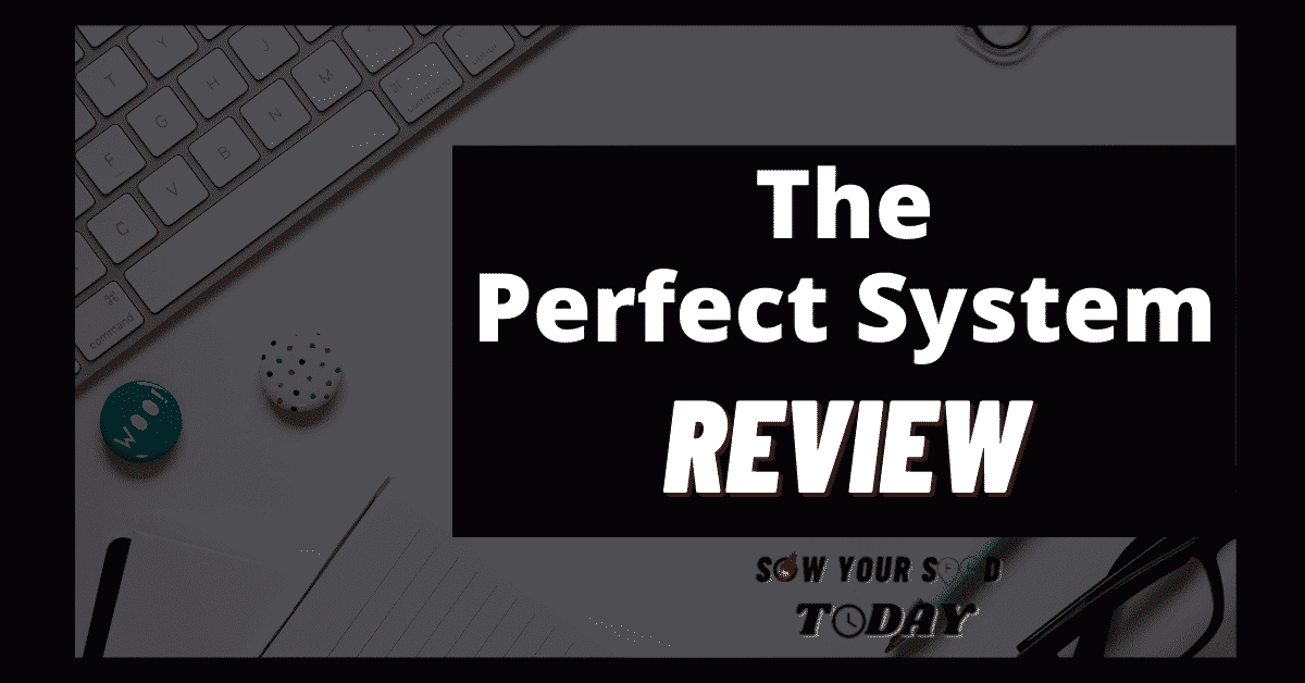 The Perfect System review