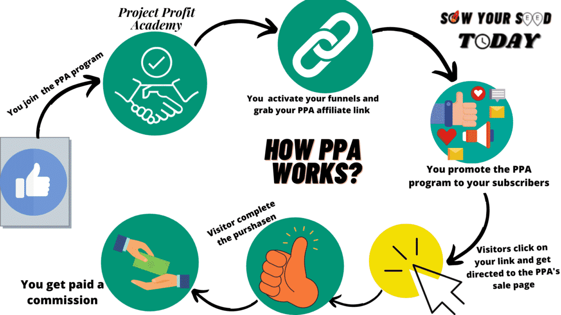 How Project Profit Academy works
