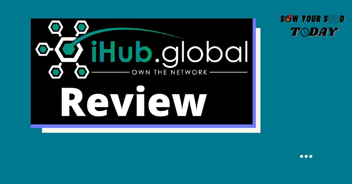 iHub Global review