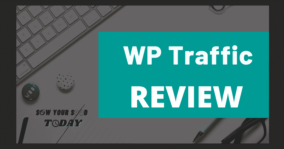 WP Traffic review-